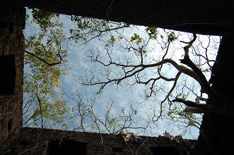 Redi Fort roof