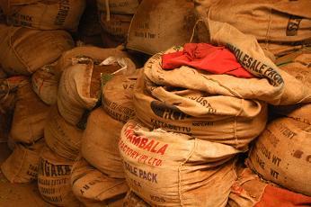 Tea Bags In Coonoor