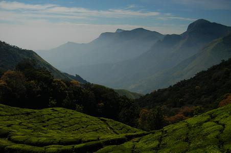 Top Station Kerala Pic