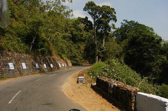 Open Road Wayanad