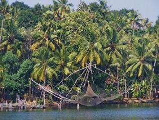 Backwater Kerala Nets