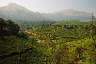 Wayanad district, Kerala